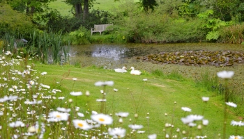 Burrow-Farm-Gardens-Devon-Visit-Coach-3-350x200