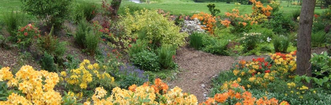 Burrow-Farm-Gardens-8-Large-1100x350