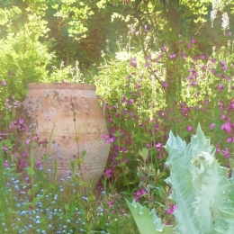 Burrow-Farm-Gardens-13-1024x503