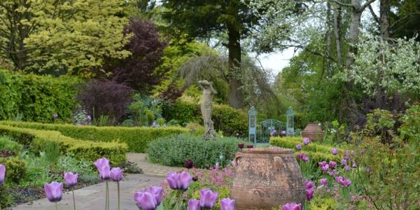 Burrow-Farm-Gardens-14-Rose-Garden-Medium-600x300