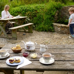 Burrow-Farm-Gardens-9-Tea-Room-Medium-1024x683
