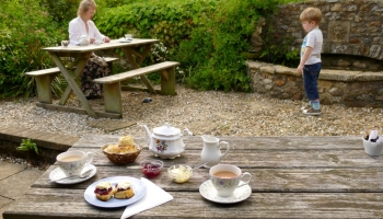 Burrow-Farm-Gardens-9-Tea-Room-Medium-350x200