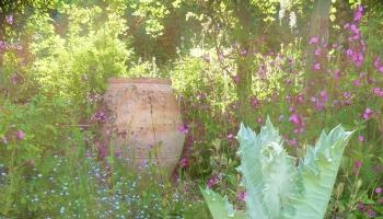 Burrow-Farm-Gardens-Visit-Devon-Holiday-South-west-Axminster-14-350x200