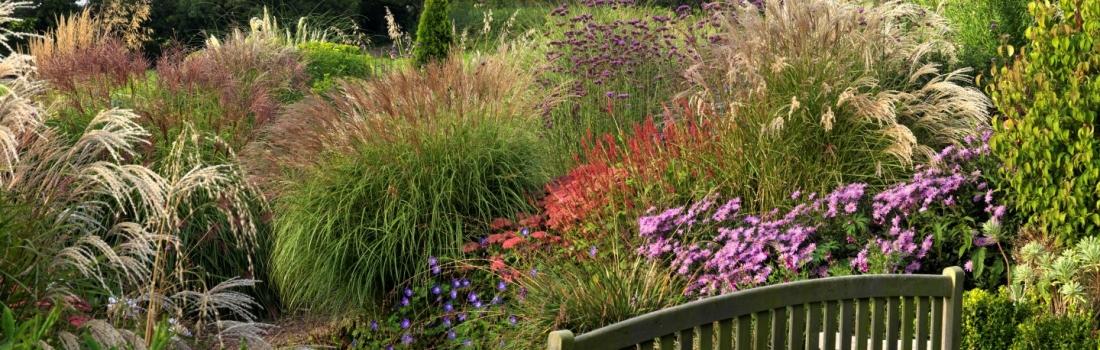 Burrow-Farm-Gardens-Devon-Visit-Coach-7-1100x350